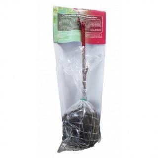 Semillas de Calabacín Belleza Negra