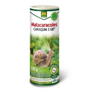 Semillas ecológicas de Cebolla Morada de Amposta