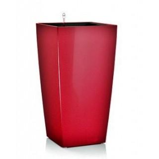 Semillas ecológicas de Sandía Crimson Sweet