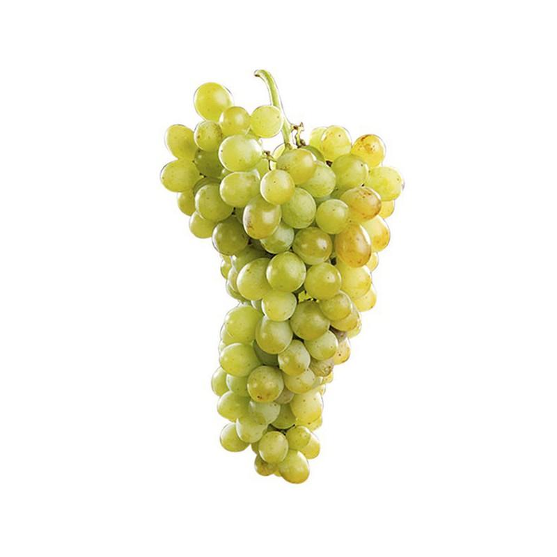 NutriBonsáis con Micronutrientes 250 ml