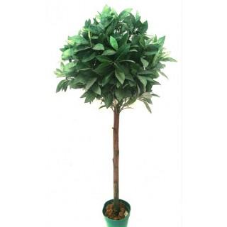 Bastoncitos Fertilizantes - Plantas de Flor